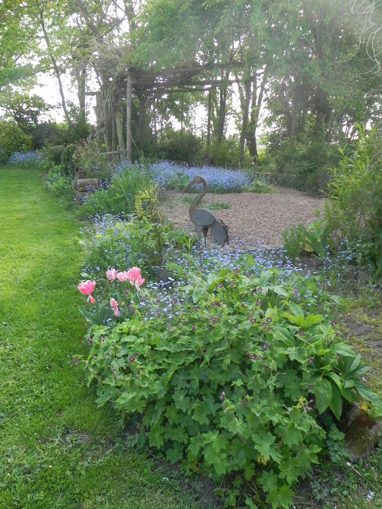 Visite de jardin avec bvo mairie d 39 oudezeele for Jardin 41 rue du temple